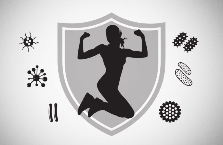 Fitness Exercise And The Immune System
